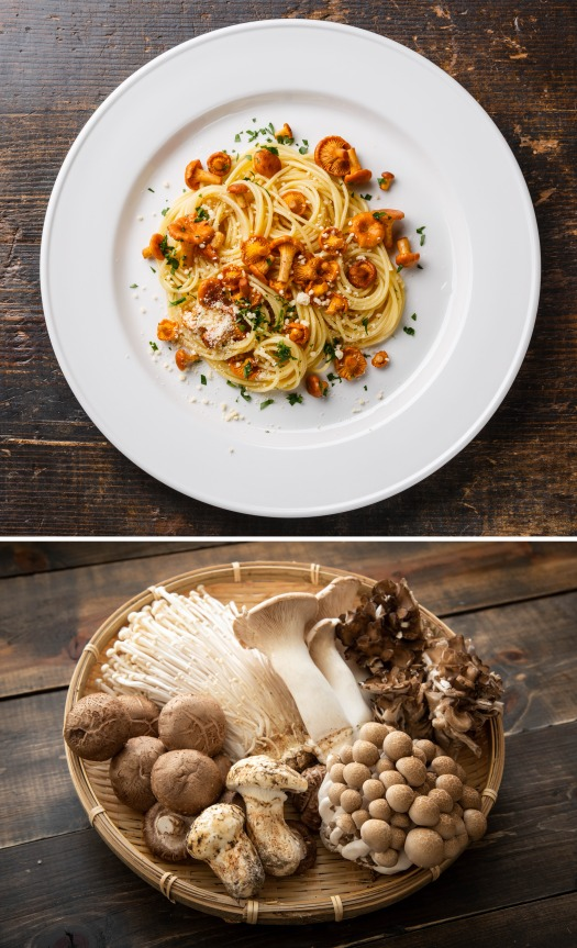 MH Pasta Recipe v1